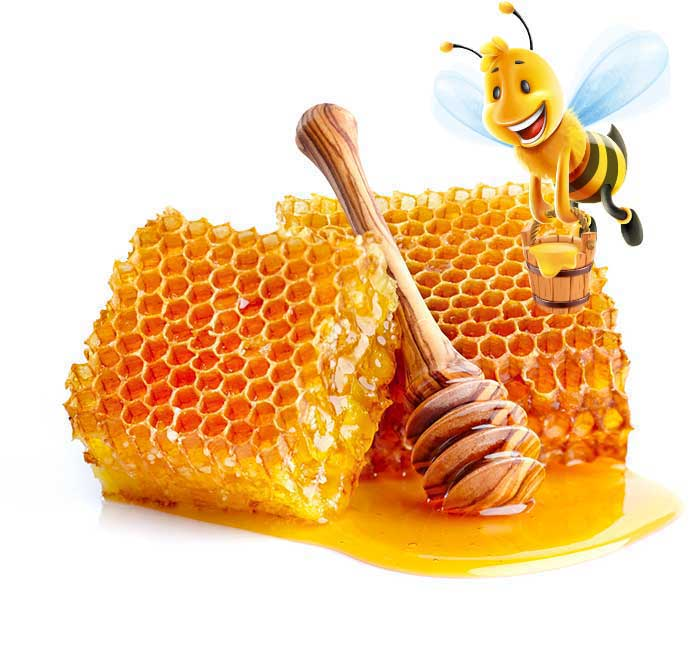 honey-with-bee1